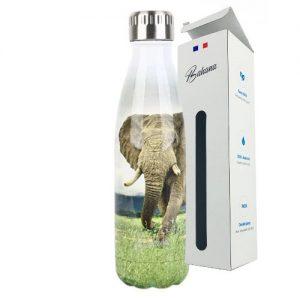 Gourde Isotherme Animal Éléphant d'Afrique